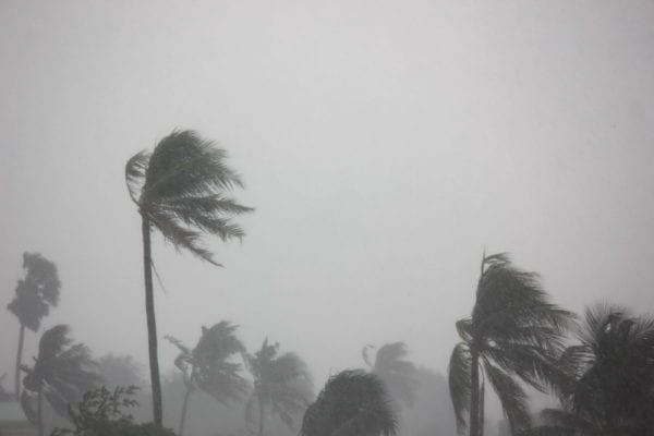 Cyclone doors